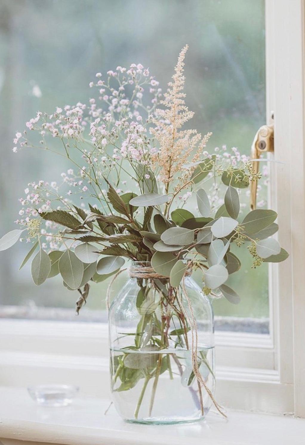 Minimalizmus vo váze: 3 rastliny, ktoré zútulnia každý interiér