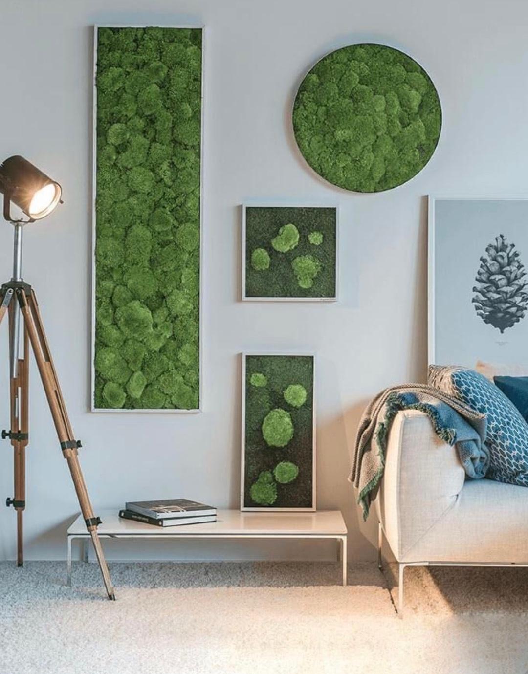 Z lesa rovno na stenu: DIY machový obraz vyčarujete za pár minút!