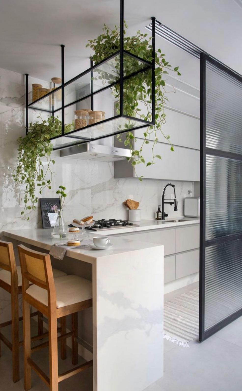 V hre nie sú len bylinky: Ktorým kvetom sa bude dariť vo vašej kuchyni?